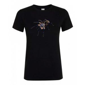 Monocentropus balfouri madárpók black női póló