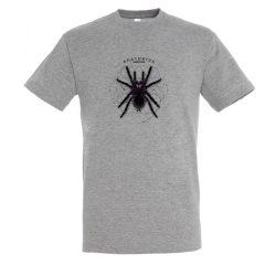 Xenesthis sp. Arachnida grey melange férfi póló
