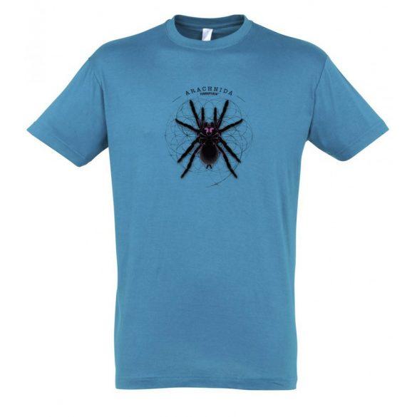 Xenesthis sp. Arachnida aqua férfi póló