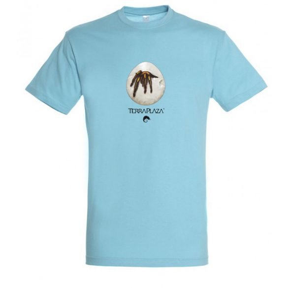 Ephebopus murinus atoll blue férfi póló