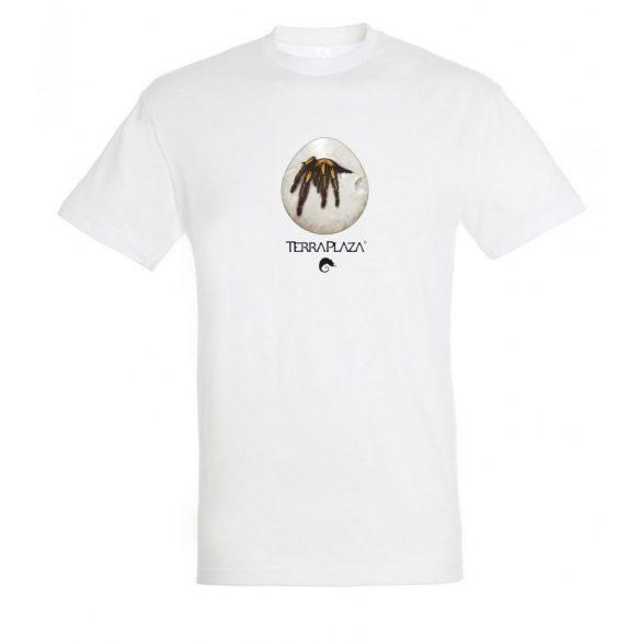 Ephebopus murinus white férfi póló
