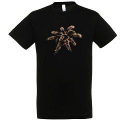 Brachypelma albopilosum madárpók black férfi póló