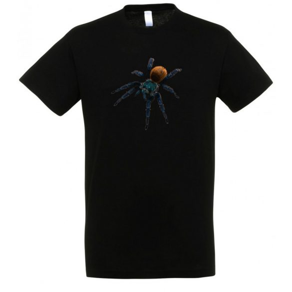 Chromatopelma cyaneopubescens madárpók black férfi póló