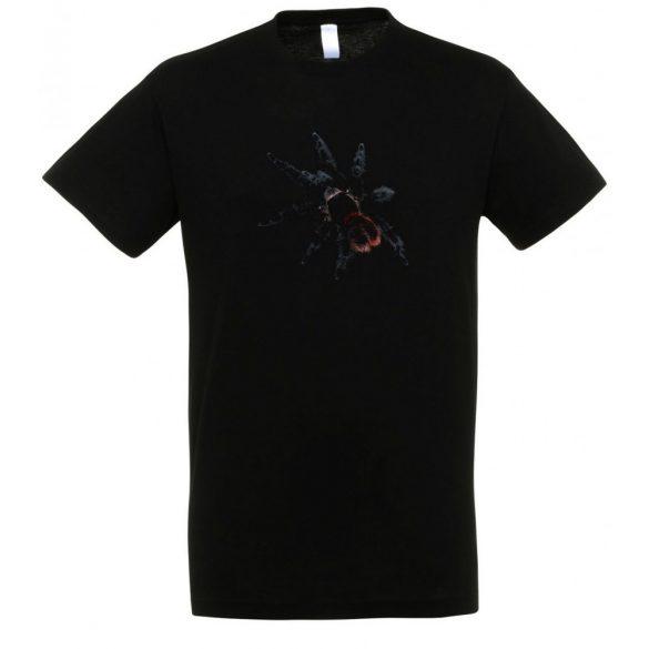 Grammostola actaeon madárpók black férfi póló