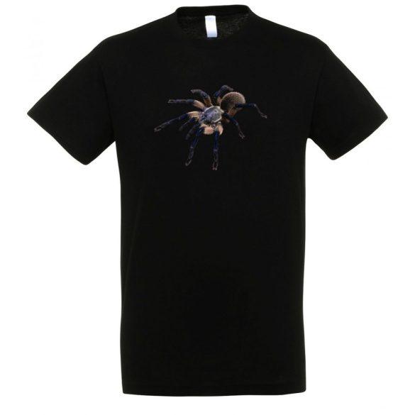 Monocentropus balfouri madárpók black férfi póló