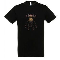 Omothymus schioedtei madárpók black férfi póló