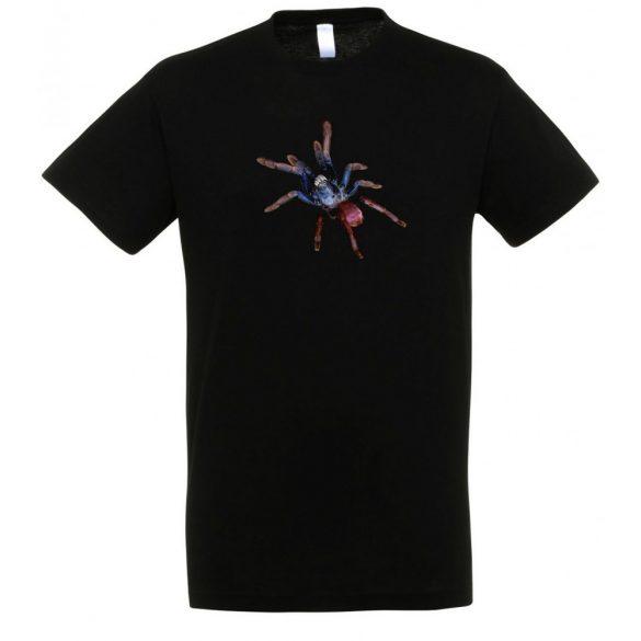 Haploclastus psychedelicus black férfi póló