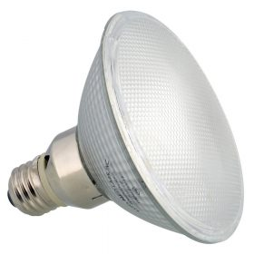 Terrárium fűtés és világítás